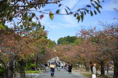 姫路の街並み